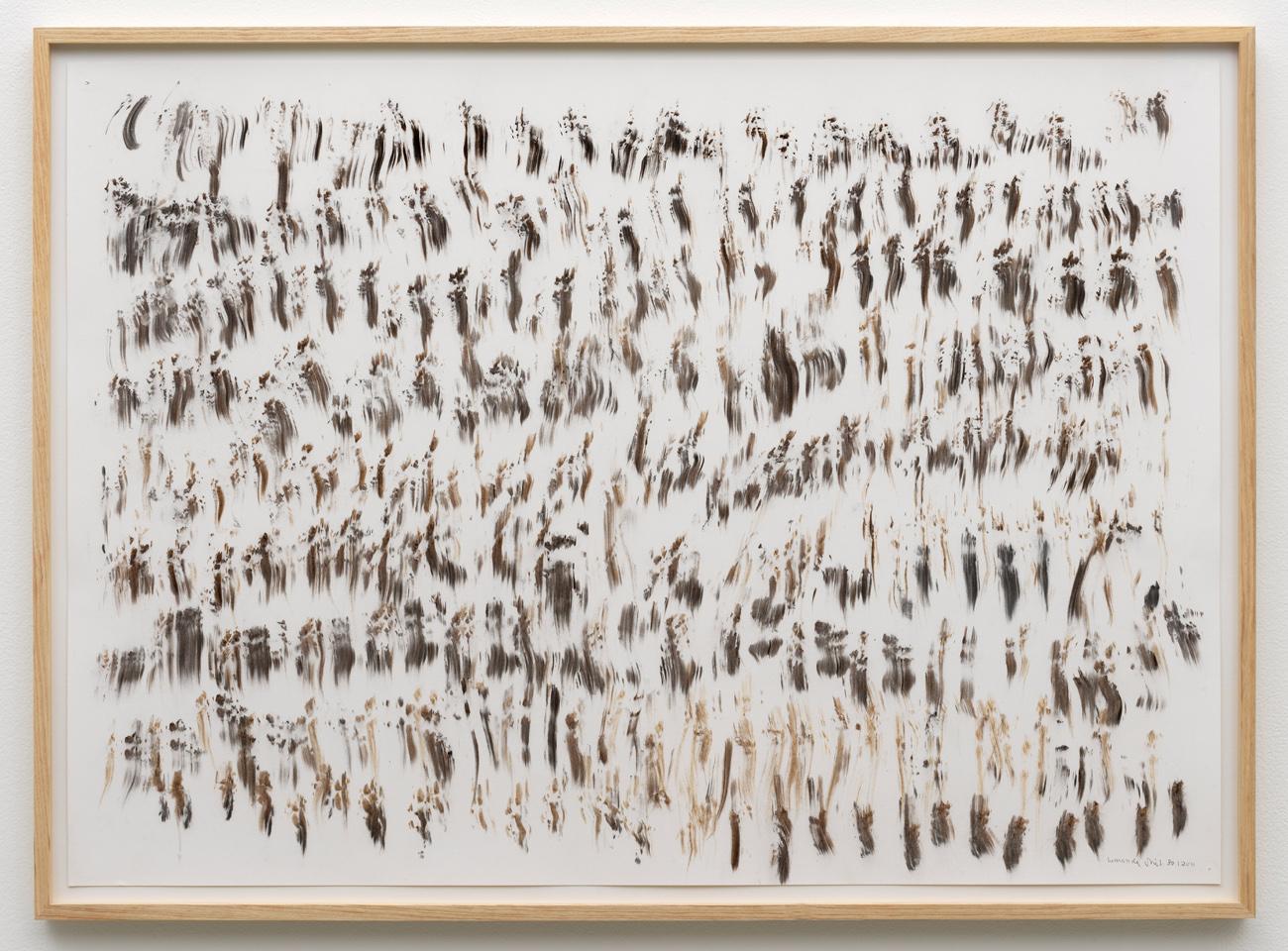 herman de vries, untitled, 2011