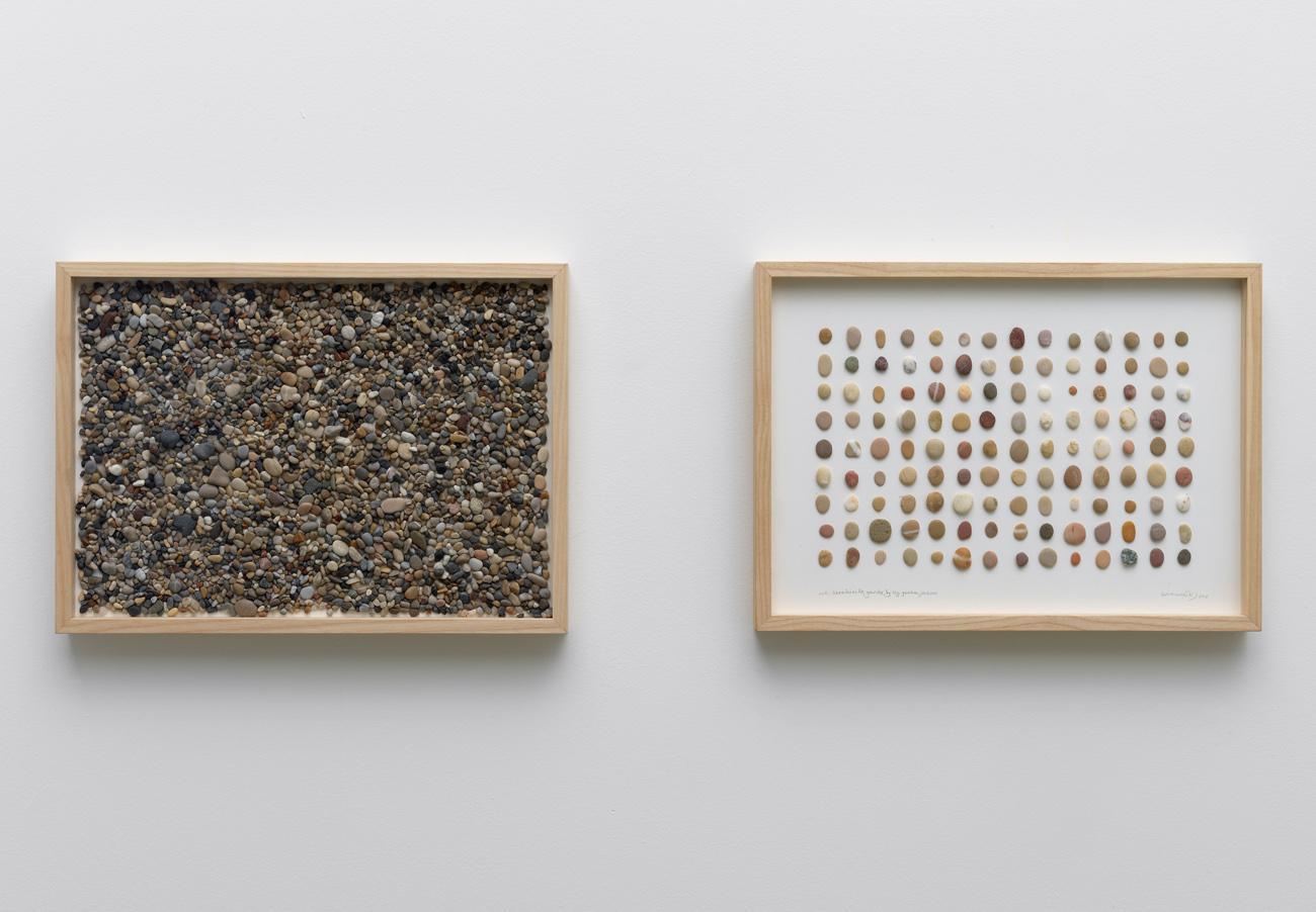 herman de vries, untitled: gavdos, 2015
